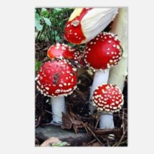 Fly agaric fungi Postcards (Package of 8)