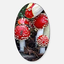 Fly agaric fungi Decal