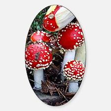 Fly agaric fungi Sticker (Oval)