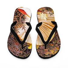 Fly agaric (Amanita muscaria) Flip Flops