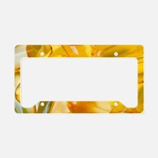 Fish oil capsules License Plate Holder