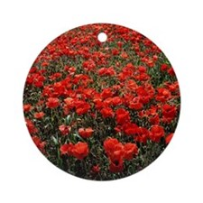 Field of red poppies Round Ornament