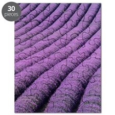 Field of lavender Puzzle