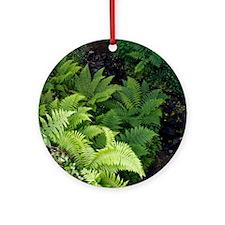 Ferns by a stream Round Ornament