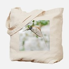 Female mayfly Tote Bag