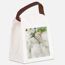 Female mayfly Canvas Lunch Bag