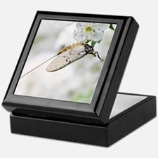 Female mayfly Keepsake Box