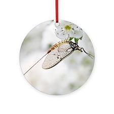 Female mayfly Round Ornament