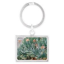 Fan aloe (Aloe plicatilis) Landscape Keychain