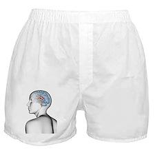 Female human head with brain Boxer Shorts
