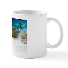 Feathertail stingray Mug