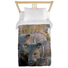 Family of Collared Peccaries Twin Duvet