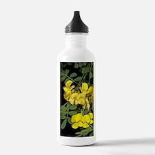 False senna (Coronilla Water Bottle