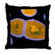 F/col TEM of Enterococcus faecalis Throw Pillow