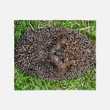 European hedgehog Throw Blanket