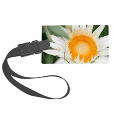 Everlasting flower Luggage Tag