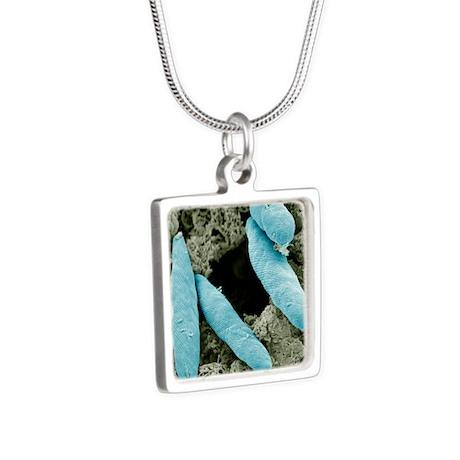 Euglena flagellate protozo Silver Square Necklace