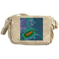 Escherichia coli bacterium Messenger Bag
