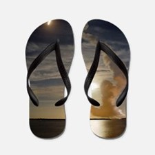 Endeavour shuttle launch, mission STS-1 Flip Flops