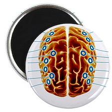 Electroencephalography, artwork Magnet