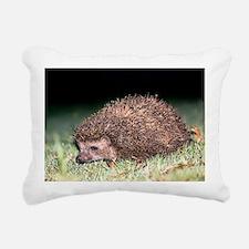 East European hedgehog Rectangular Canvas Pillow