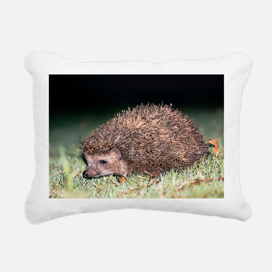 East European hedgehog Rectangular Canvas Pillow