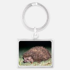East European hedgehog Landscape Keychain