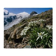 Edelweiss and glacier Throw Blanket