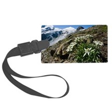 Edelweiss and glacier Luggage Tag
