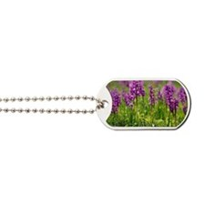 Early purple orchids (Orchis mascula) Dog Tags