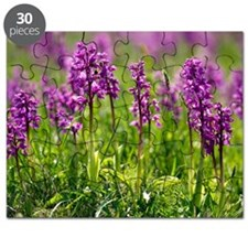 Early purple orchids (Orchis mascula) Puzzle
