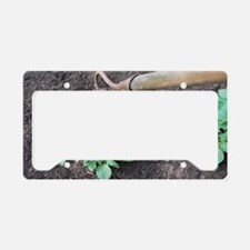 Earthing-up organic potatoes License Plate Holder