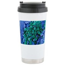 E. coli bacteria, SEM Travel Mug