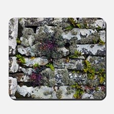 Drystone wall with plants Mousepad