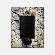 Drought, conceptual image Picture Frame