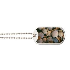Dried opium poppies Dog Tags