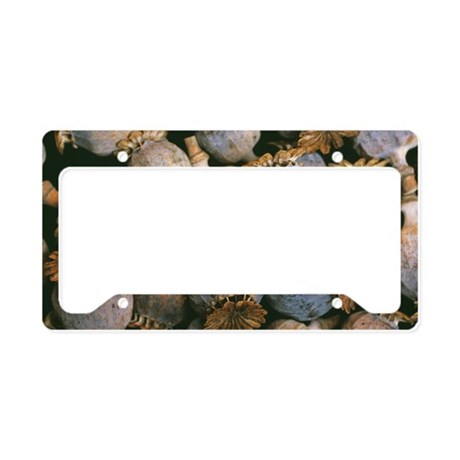 Dried opium poppies License Plate Holder
