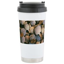 Dried opium poppies Travel Mug