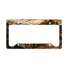 Dry rot fungus License Plate Holder