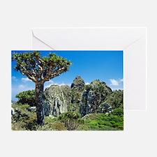 Dragon's blood tree Greeting Card