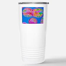 Dividing Streptococcus sp. bact Travel Mug