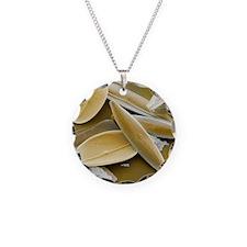 Diatoms, SEM Necklace