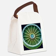 Diatom, SEM Canvas Lunch Bag