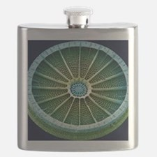 Diatom, SEM Flask