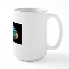 Diatom alga, SEM Mug