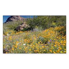 Desert wildflowers Decal