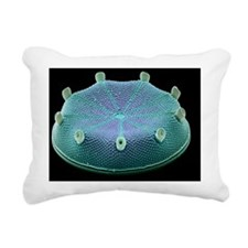 Diatom alga, SEM Rectangular Canvas Pillow