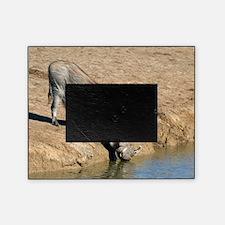 Desert warthog Picture Frame