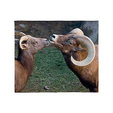 Desert Bighorn Sheep Throw Blanket