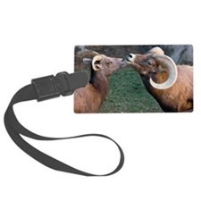 Desert Bighorn Sheep Luggage Tag
